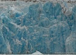 glacier-alasaka-4688-copyright-photographers-on-safari