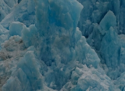 glacier-alasaka-4691-copyright-photographers-on-safari