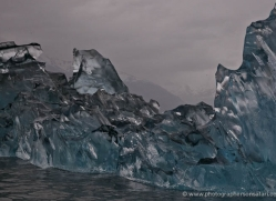 iceberg-alasaka-4709-copyright-photographers-on-safari