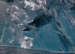 iceberg-alasaka-4712-copyright-photographers-on-safari