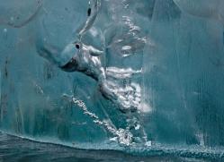 iceberg-alasaka-4713-copyright-photographers-on-safari