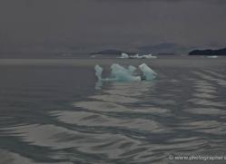 iceberg-alasaka-4727-copyright-photographers-on-safari