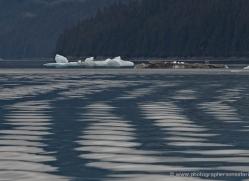 iceberg-alasaka-4728-copyright-photographers-on-safari