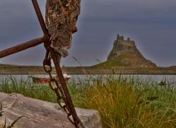 Long-Eared-Owl-copyright-photographers-on-safari-com-6060