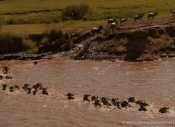 migration-river-crossings-masai-mara-1607-copyright-photographers-on-safari-com