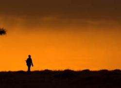 sunset-masai-mara-1659-copyright-photographers-on-safari-com