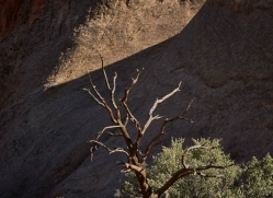 landscapes-moab-2122-copyright-photographers-on-safari-com