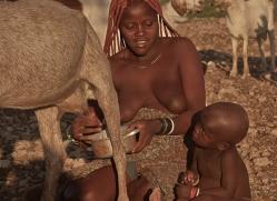 Himba-Tribe-copyright-photographers-on-safari-com-6895