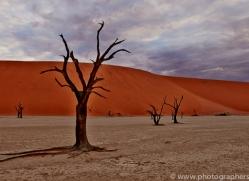 deadvlei-copyright-photographers-on-safari-com-6745