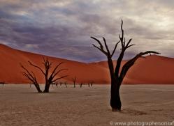 deadvlei-copyright-photographers-on-safari-com-6746