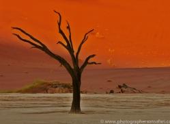 deadvlei-copyright-photographers-on-safari-com-6753