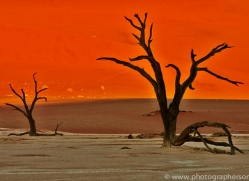 deadvlei-copyright-photographers-on-safari-com-6755