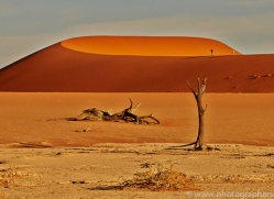 deadvlei-copyright-photographers-on-safari-com-6764