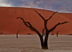 deadvlei-copyright-photographers-on-safari-com-6743