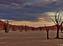 deadvlei-copyright-photographers-on-safari-com-6744