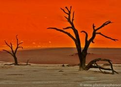 deadvlei-copyright-photographers-on-safari-com-6755