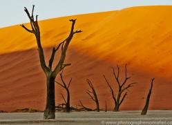 deadvlei-copyright-photographers-on-safari-com-6758