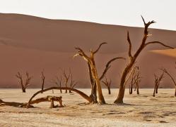deadvlei-copyright-photographers-on-safari-com-6762