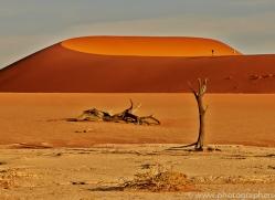 deadvlei-copyright-photographers-on-safari-com-6764
