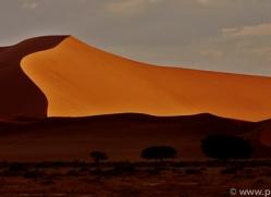 sossusvlei-copyright-photographers-on-safari-com-6769