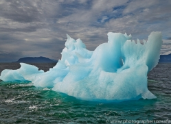 Iceberg 2014-2copyright-photographers-on-safari-com