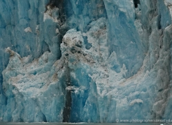 glacier-alasaka-4689-copyright-photographers-on-safari
