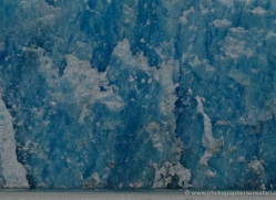 glacier-alasaka-4693-copyright-photographers-on-safari