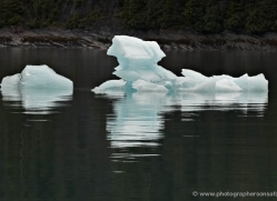 iceberg-alasaka-4699-copyright-photographers-on-safari