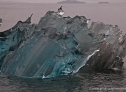 iceberg-alasaka-4705-copyright-photographers-on-safari