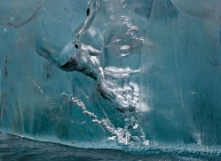 iceberg-alasaka-4713-copyright-photographers-on-safari