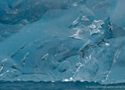 iceberg-alasaka-4726-copyright-photographers-on-safari