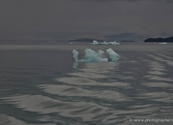 iceberg-alasaka-4727-copyright-photographers-on-safari