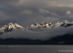 inside-passage-alasaka-4596-copyright-photographers-on-safari