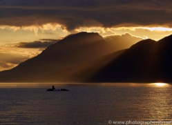 humpback-whales-copyright-photographers-on-safari-com-7745