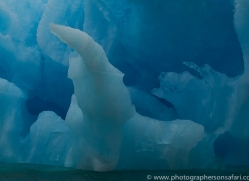iceberg-copyright-photographers-on-safari-com-7786