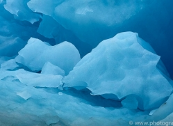 iceberg-copyright-photographers-on-safari-com-7787