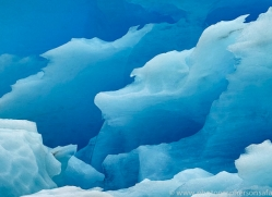 iceberg-copyright-photographers-on-safari-com-7789
