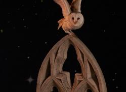 barn-owl-copyright-photographers-on-safari-com-8862