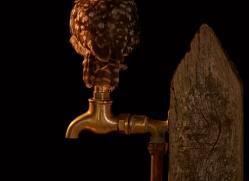 little-owl-copyright-photographers-on-safari-com-8912