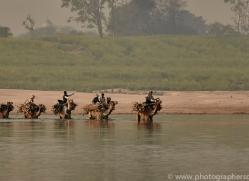 indian-camel-copyright-photographers-on-safari-com-7342