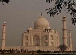 taj-mahal-india-1433-copyright-photographers-on-safari-com