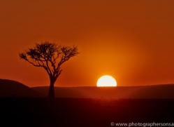 Sunrise 2014-5copyright-photographers-on-safari-com