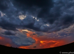 Sunset 2014-12copyright-photographers-on-safari-com