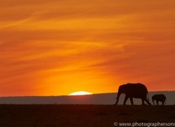 Sunset 2014-6copyright-photographers-on-safari-com