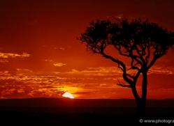 sunrise-masai-mara-1651-copyright-photographers-on-safari-com