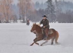 wild-west-horse-roundup-copyright-photographers-on-safari-com-7669