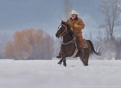 wild-west-horse-roundup-copyright-photographers-on-safari-com-7679