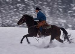 wild-west-horse-roundup-copyright-photographers-on-safari-com-7717