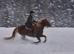 wild-west-horse-roundup-copyright-photographers-on-safari-com-7718