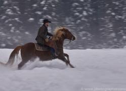 wild-west-horse-roundup-copyright-photographers-on-safari-com-7719